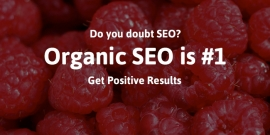 Why Do People Doubt SEO?